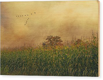 Cornfield And Fog Wood Print