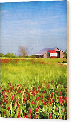 Country Kind Of Spring Wood Print by Darren Fisher