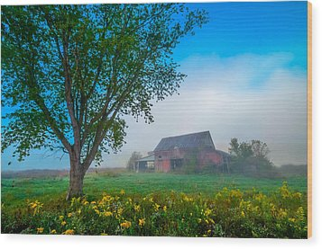 Country Morning Wood Print by Brian Stevens