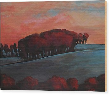 Countryside Wood Print by Suzanne Tynes