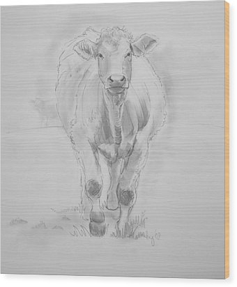 Cow Drawing Wood Print
