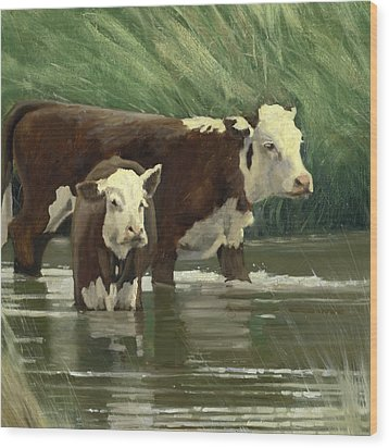 Cows In The Pond Wood Print by John Reynolds