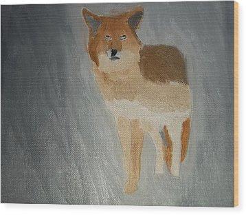 Coyote Oil Painting Wood Print by William Sahir House