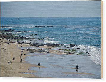 Wood Print featuring the photograph Crystal Cove Beach by Joseph Hollingsworth