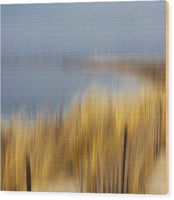 Cupsogue Beach II Wood Print by Bob Retnauer