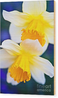 Wood Print featuring the photograph Daffodils by Roselynne Broussard