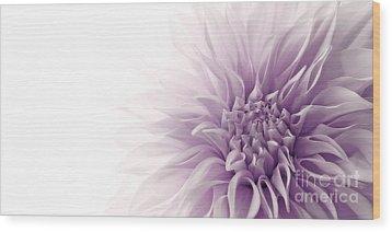 Dahlia Wood Print by Priska Wettstein