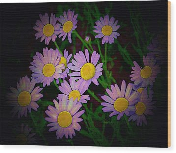 Wood Print featuring the photograph Daisies I by Shirley Moravec