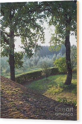 Dawn In Loppiano Wood Print