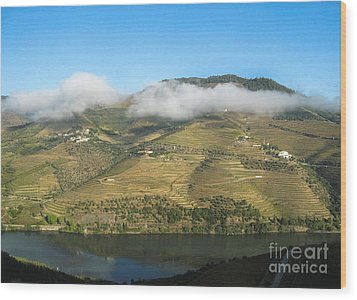 Wood Print featuring the photograph Douro River Valley by Arlene Carmel
