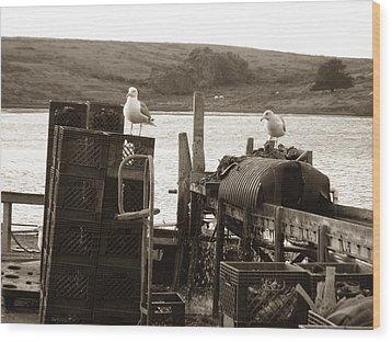 Wood Print featuring the photograph Drakes Bay Oyster Farm by Hiroko Sakai