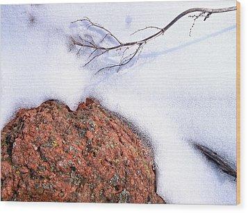 Drifting Wood Print by Tom Druin