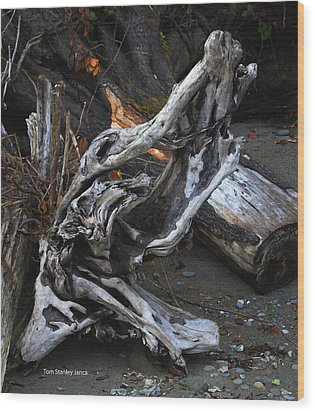 Driftwood On The Beach Wood Print by Tom Janca