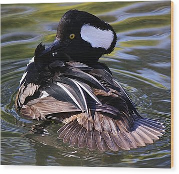 Duck Wood Print by Paulette Thomas