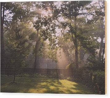 Early Morning Peace Wood Print