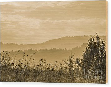 Early Morning Vitosha Mountain View Bulgaria Wood Print