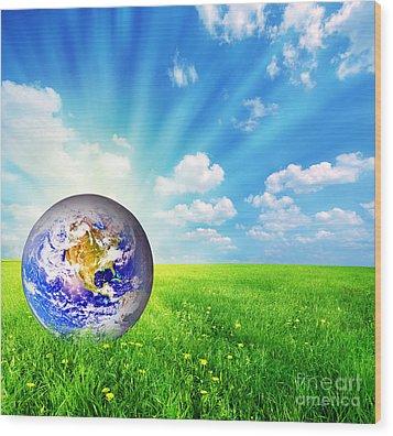 Earth Globe On Green Grass Wood Print by Michal Bednarek