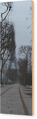 Eiffel Tower - Paris France - 011312 Wood Print by DC Photographer