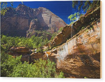 Wood Print featuring the photograph Emerald Pools Falls Zion Park by Richard Wiggins
