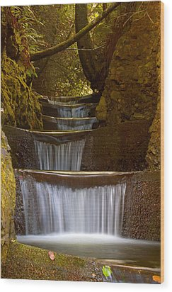 Endless Waterfall Wood Print by Lara Ellis
