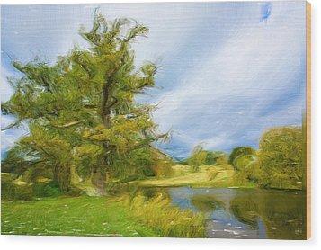 English Landscape Wood Print by Tom Gowanlock