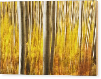 Wood Print featuring the photograph Fall Abstract by Ronda Kimbrow