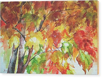 Fall Folliage  Wood Print by Betty M M   Wong