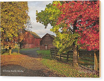 Fall On A Farm In Oregon Wood Print by Tonia Noelle