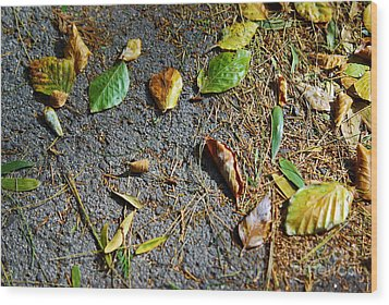 Fallen Leaves Wood Print by Carlos Caetano