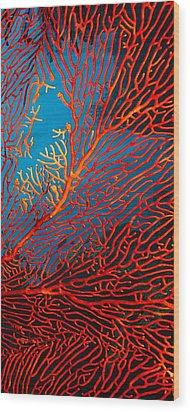 Fantasy Fan Wood Print by Paula Marie deBaleau