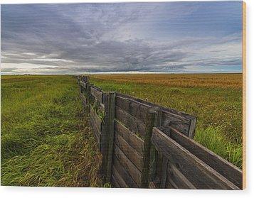 Fence Landscape Wood Print
