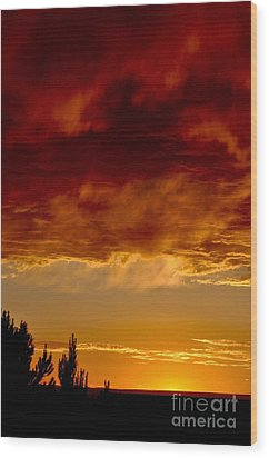 Fire In The Sky Wood Print by Gina Savage