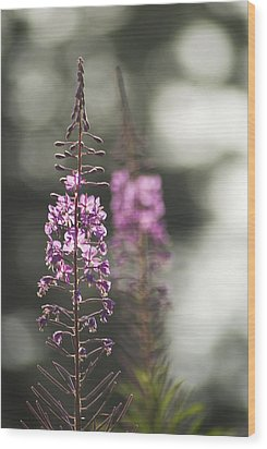 Wood Print featuring the photograph Fireweed by Yulia Kazansky