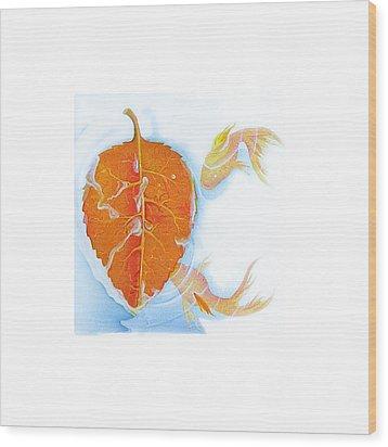 Fishsalad 5 Wood Print by Laura Dozor