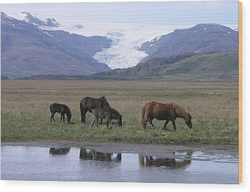 Flaajokull Wood Print by Christian Zesewitz