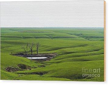 Flint Hills Spring Wood Print
