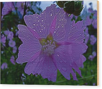Flower After Rain Wood Print