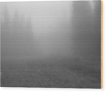 Fog In Tileston Meadow Wood Print