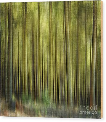 Forest Wood Print by Bernard Jaubert