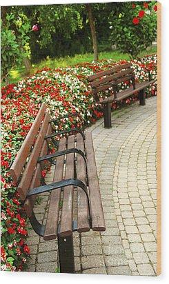 Formal Garden Wood Print by Elena Elisseeva