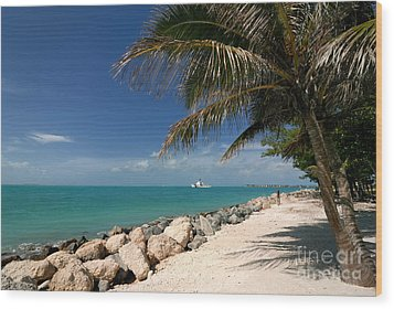 Fort Zachary Taylor Beach Wood Print by Amy Cicconi