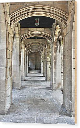 Fourth Presbyterian Church Chicago Wood Print by Christine Till
