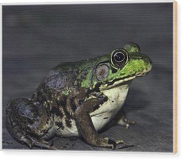 Frogger Wood Print