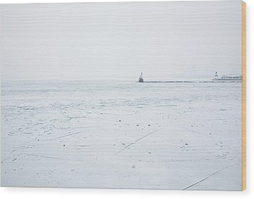 Frozen Wood Print by Joanna Madloch