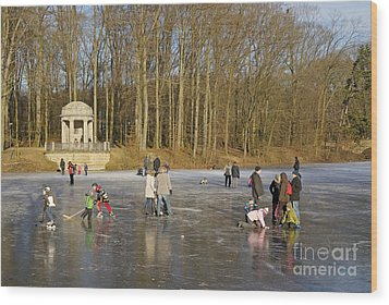 Frozen Lake Krefeld Germany. Wood Print by David Davies