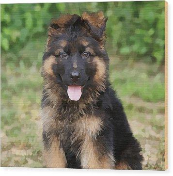 German Shepherd Puppy Wood Print by Sandy Keeton