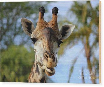 Giraffe Wood Print by Lisa L Silva