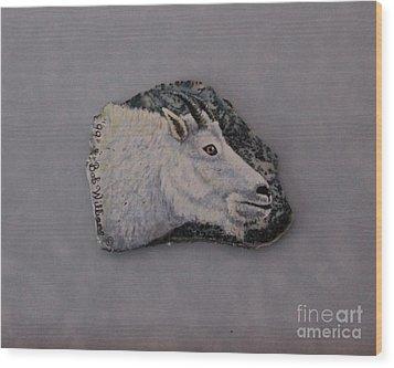 Glacier Park Mountain Goat Wood Print
