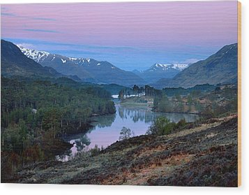 Glen Affric Wood Print