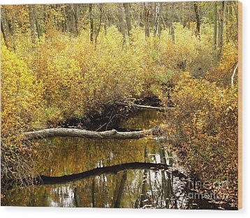 Golden Creek Wood Print